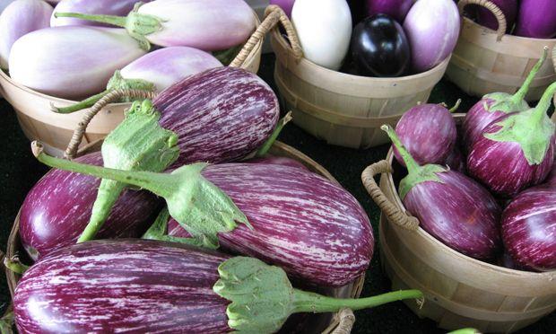 Mini-Eggplant Recipe
